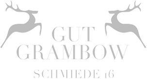 Logo Schmiede 16